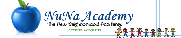 NuNa Academy logo